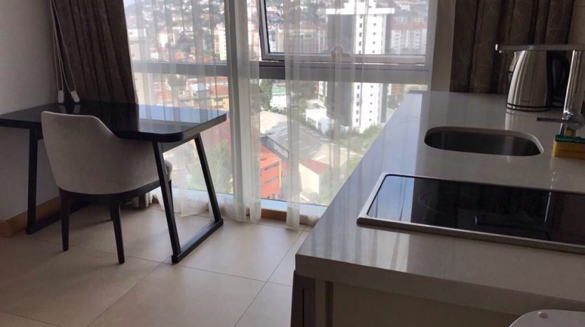 furnished apartment for rent in istanbul sehir university kartal campus